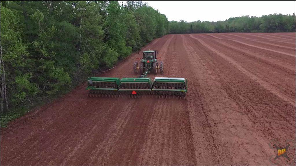 Planting Barley